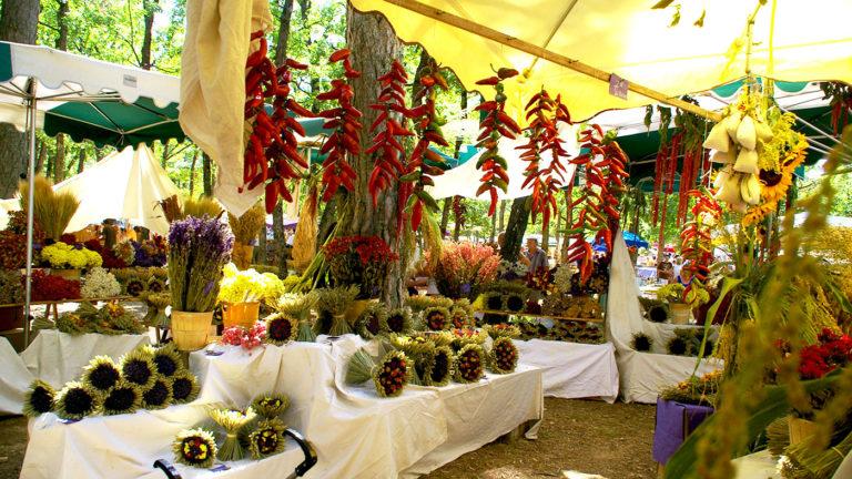 Bouquets Fête de la lavande