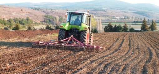 Préparatif plantation lavande au printemps