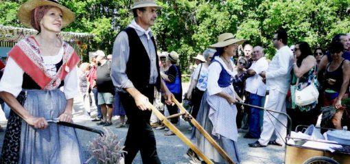 costume Provençal 15 août